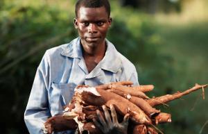 cassava farmer