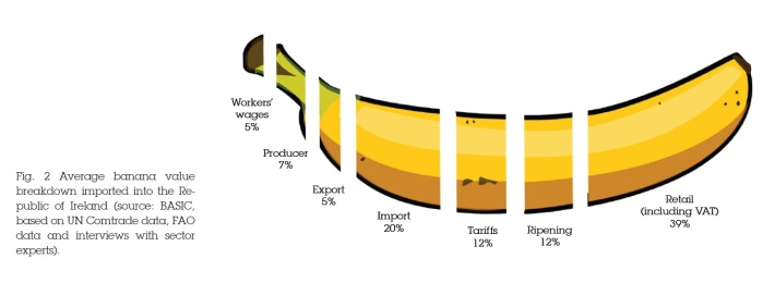 Infographic_ft_bananas