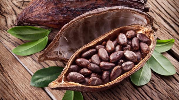 cocoa-market-potential